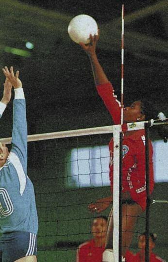 Volleyball-Antenne einteilig