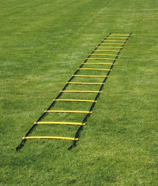 Coordination Ladder